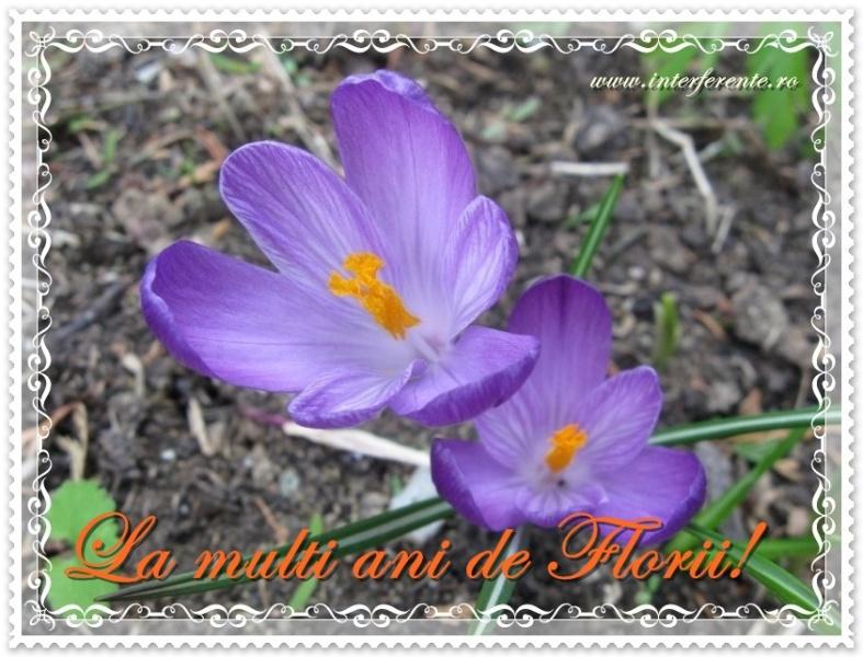 http://www.interferente.ro/images/stories//pasti/florii/felicitare%20sarbatoare%20florii.jpg