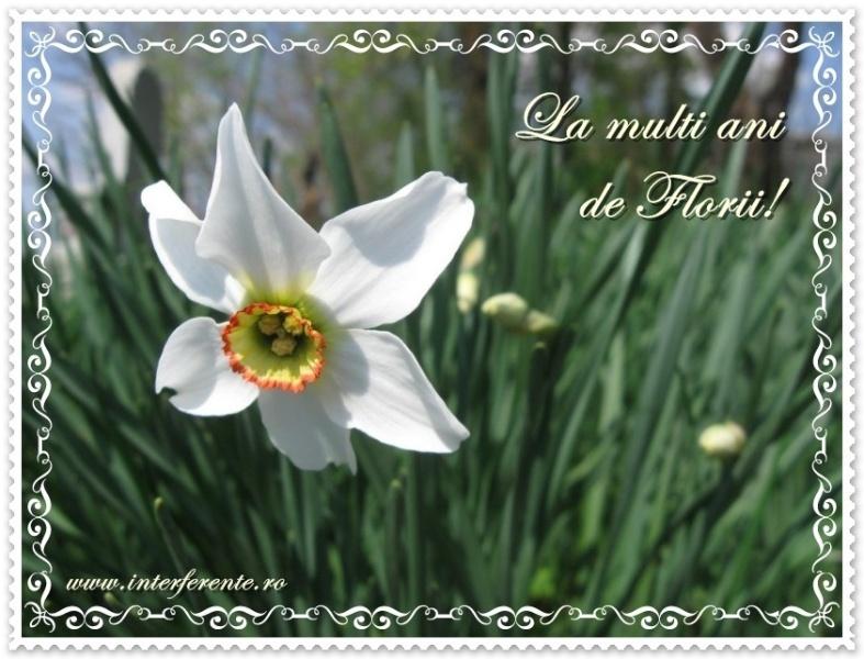 http://www.interferente.ro/images/stories//pasti/florii/mesaj%20felicitare%20florii.jpg