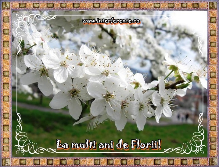 http://www.interferente.ro/images/stories//sarbatori/florii_2014_felicitari/felicitare%20online%20de%20florii.JPG