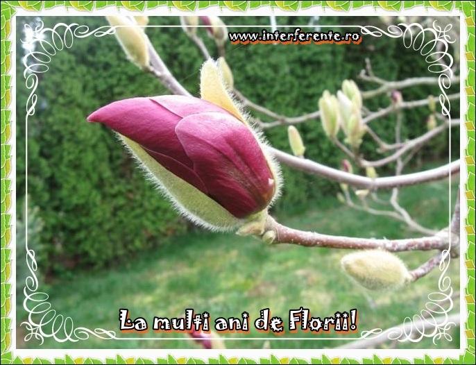 http://www.interferente.ro/images/stories//sarbatori/florii_2014_felicitari/la%20multi%20ani%20de%20florii%20felicitare.JPG