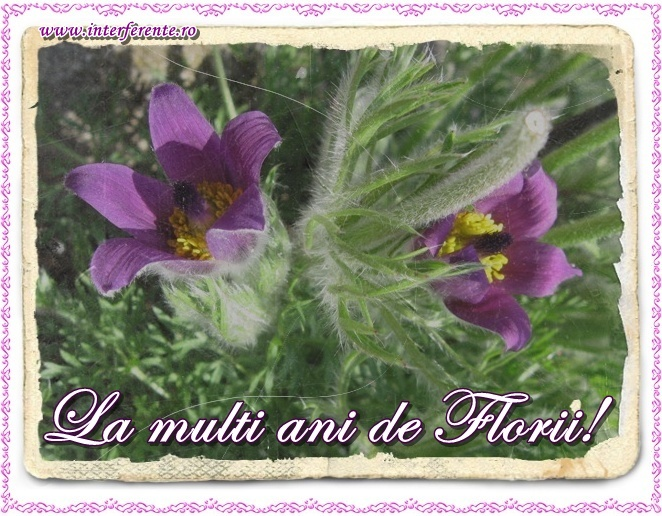http://www.interferente.ro/images/stories//sarbatori/floriile_felicitari/la%20multi%20ani%20de%20florii%20felicitare.jpg