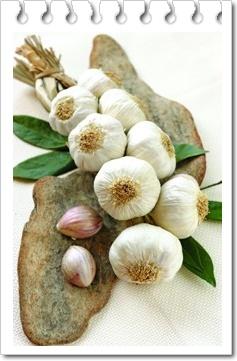 Din medicina traditionala usturoiul