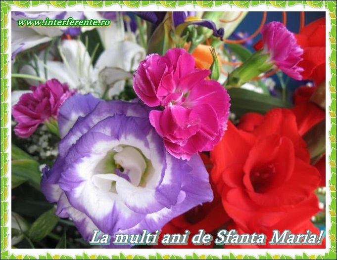 http://www.interferente.ro/images/stories/sarbatori/La-multi-ani-de-Sfanta-Maria-felicitari/La%20multi%20ani%20de%20Sfanta%20Maria.JPG