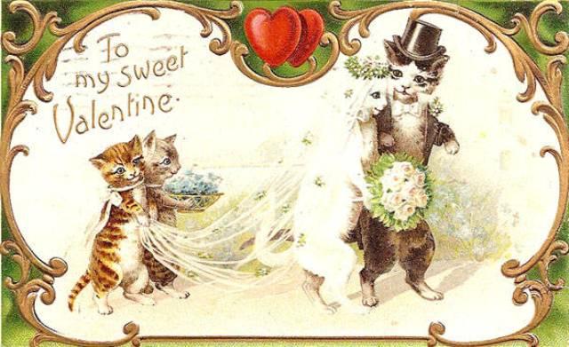 Felicitari si imagini de Valentines day cu pisici